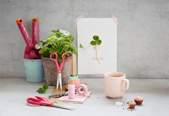 Creatività in fiore
