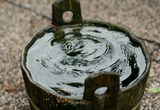 Raccogli l'acqua piovana
